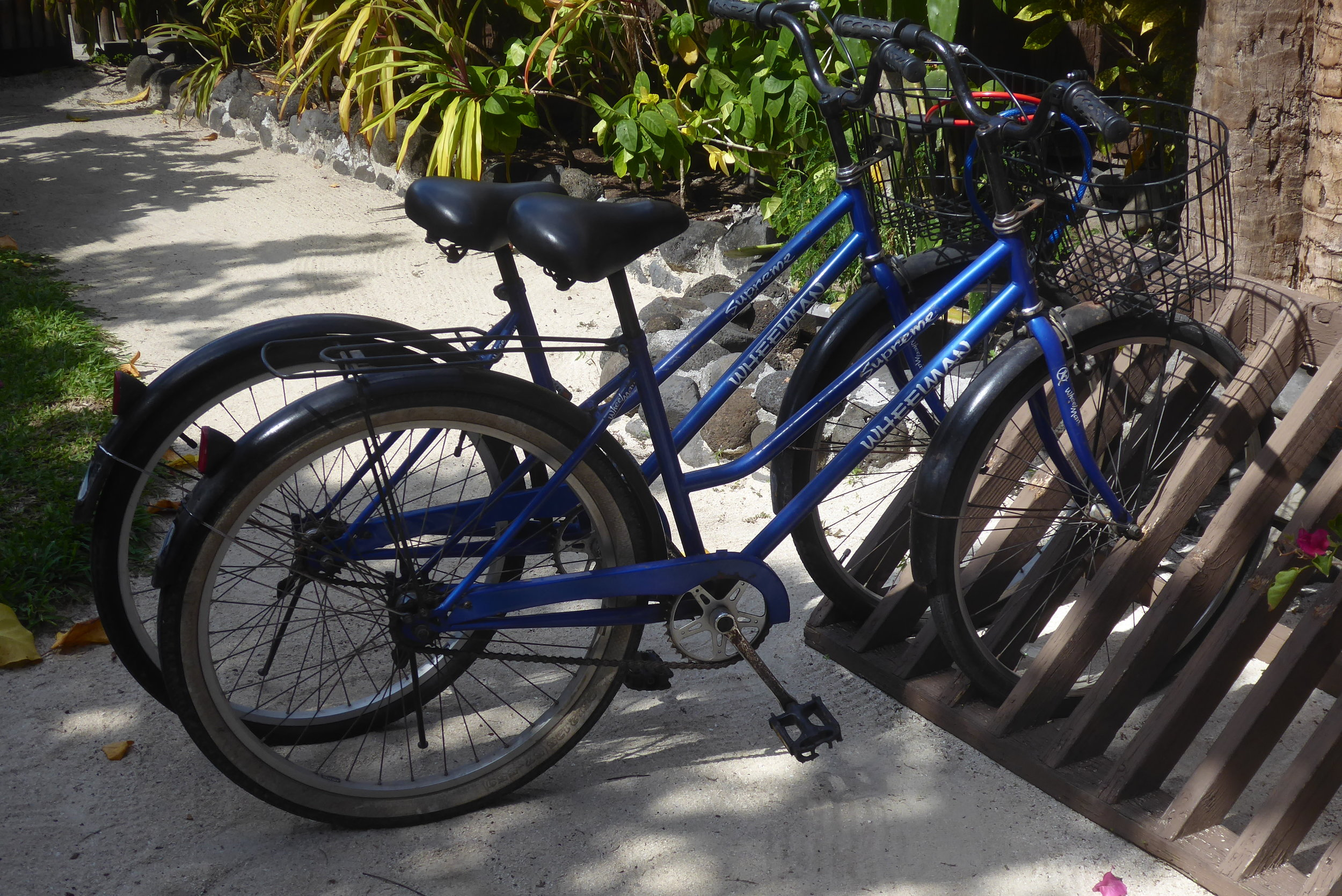Typical bike for hire on Bora Bora