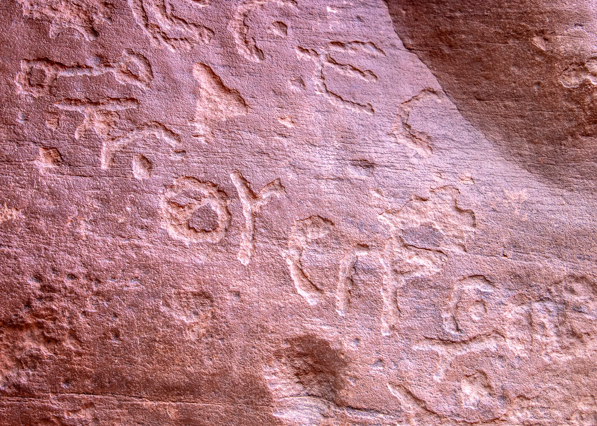 I think these are the Thamudic inscriptions