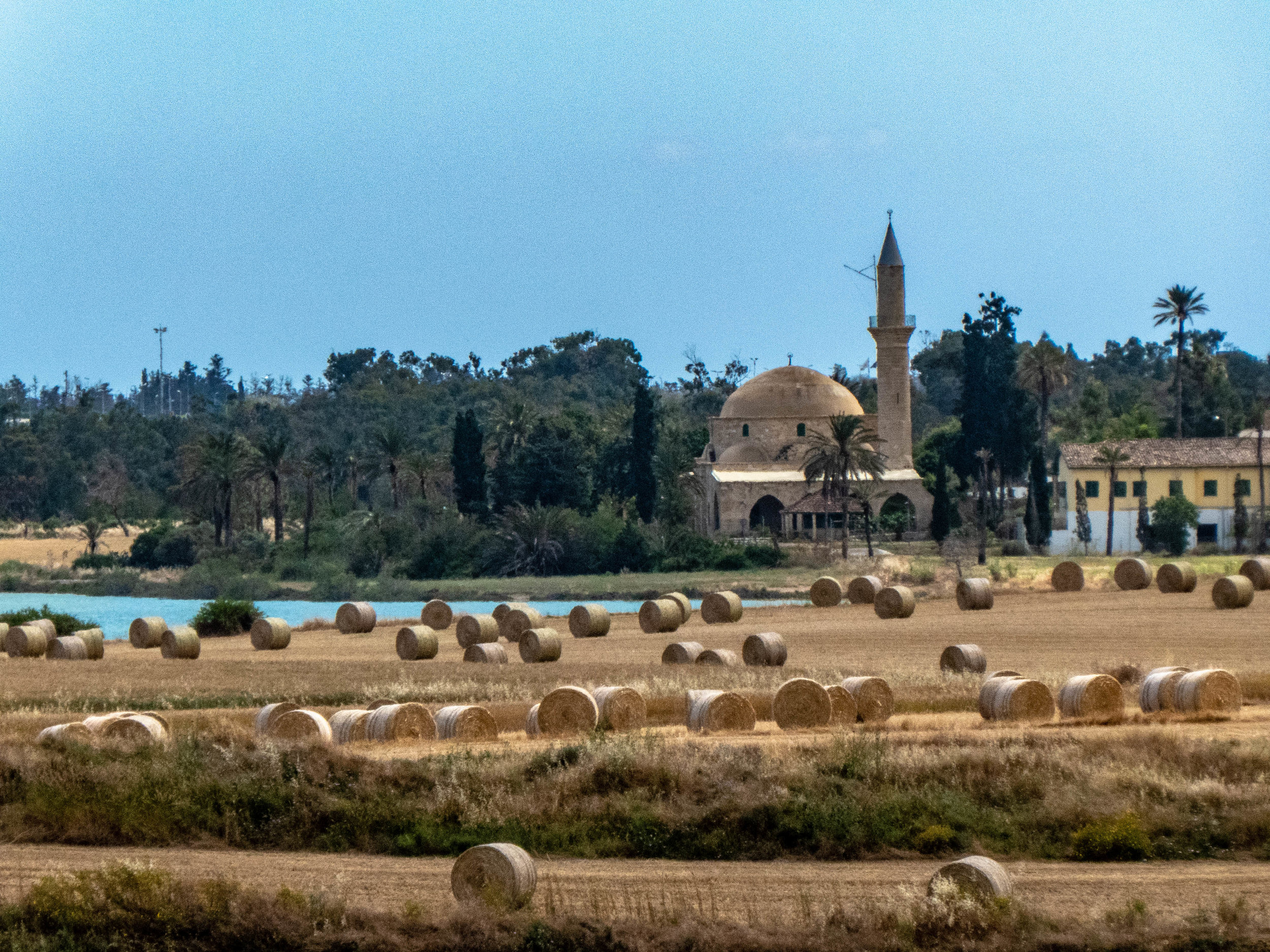 Mosque views from the farmlands