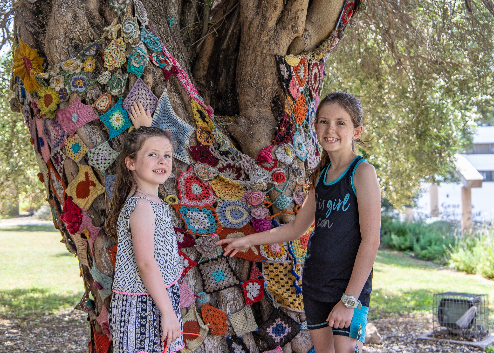 A crocheted tree just outside the Municipal Gallery