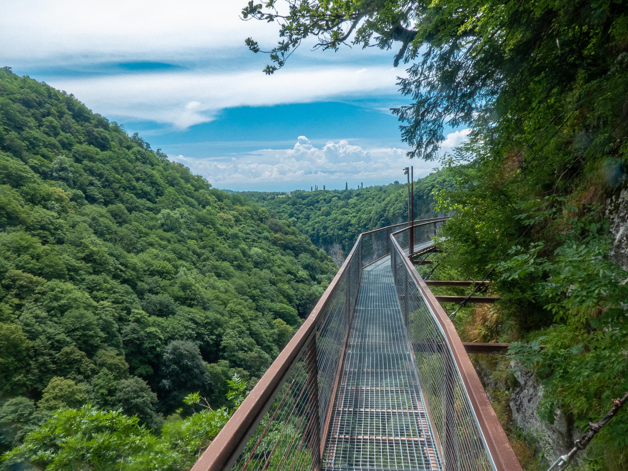 The suspension walkway