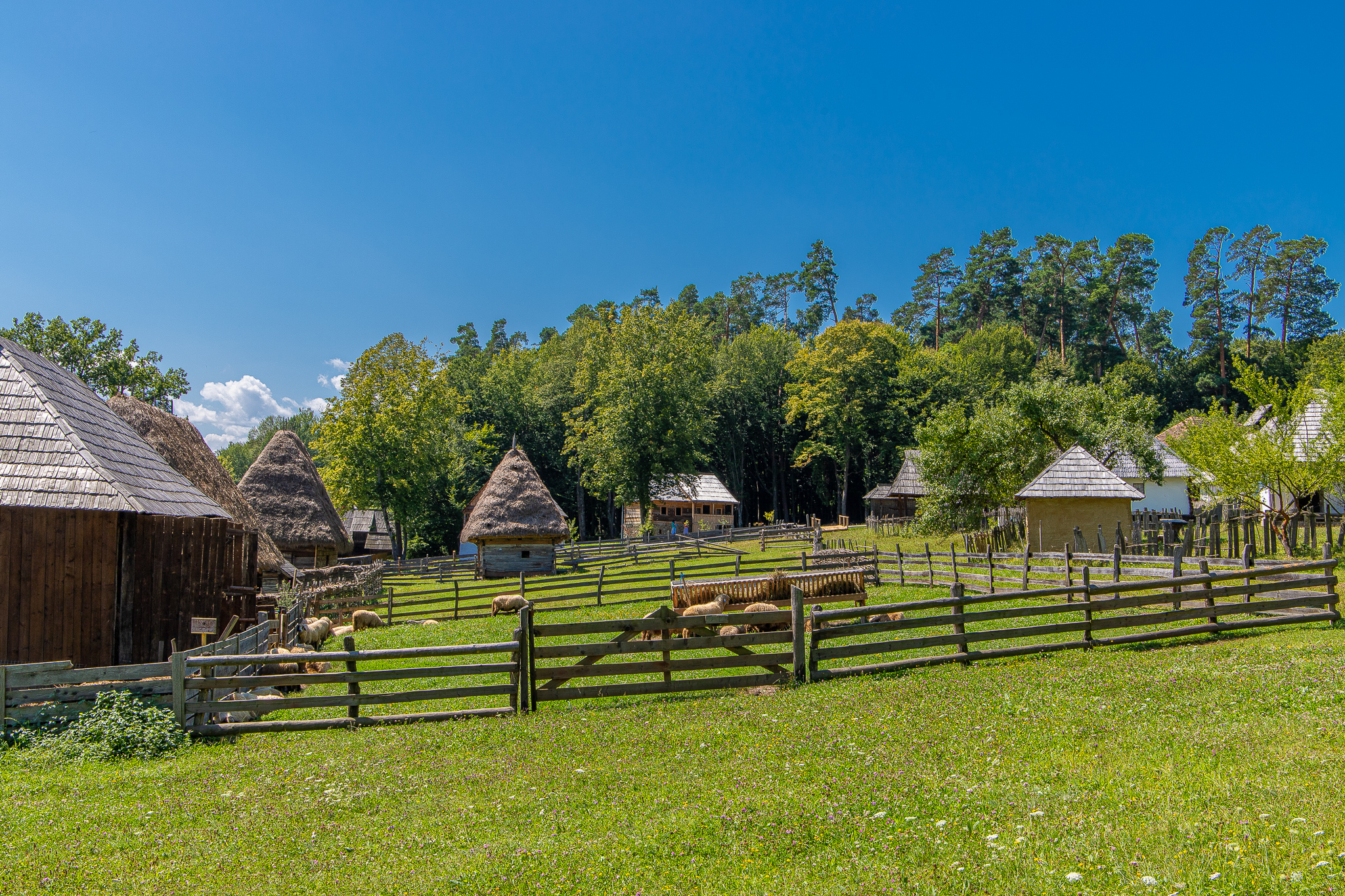 A typical Romanian countryside scene