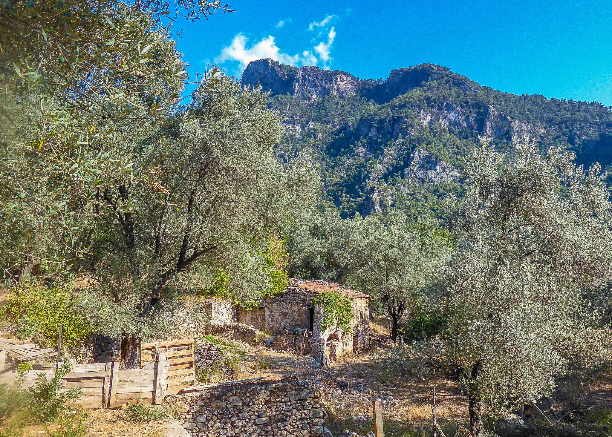 Rural scenes near Kirme