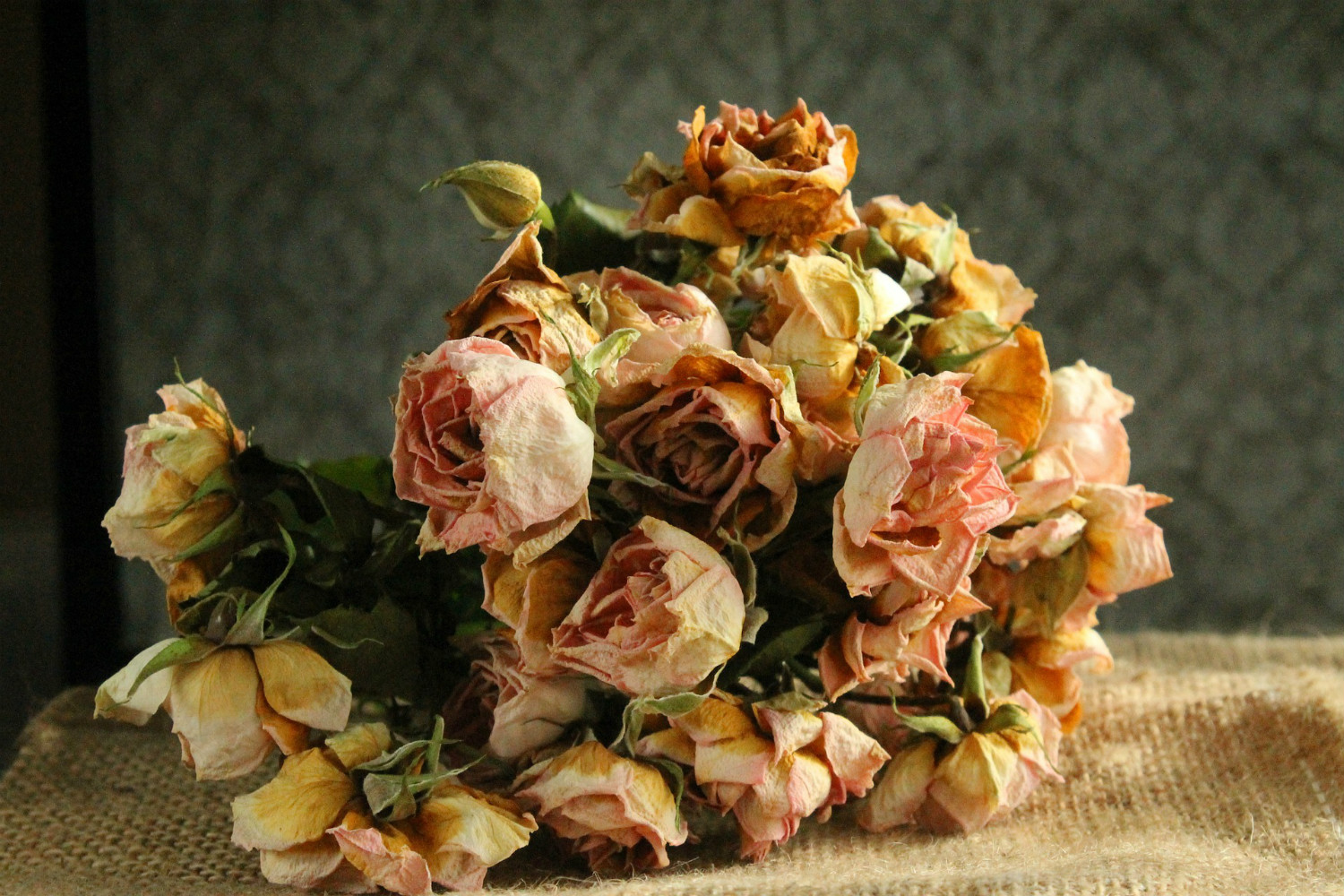 Fading roses on a table, courtesy  of vargazs,  pixabay.com