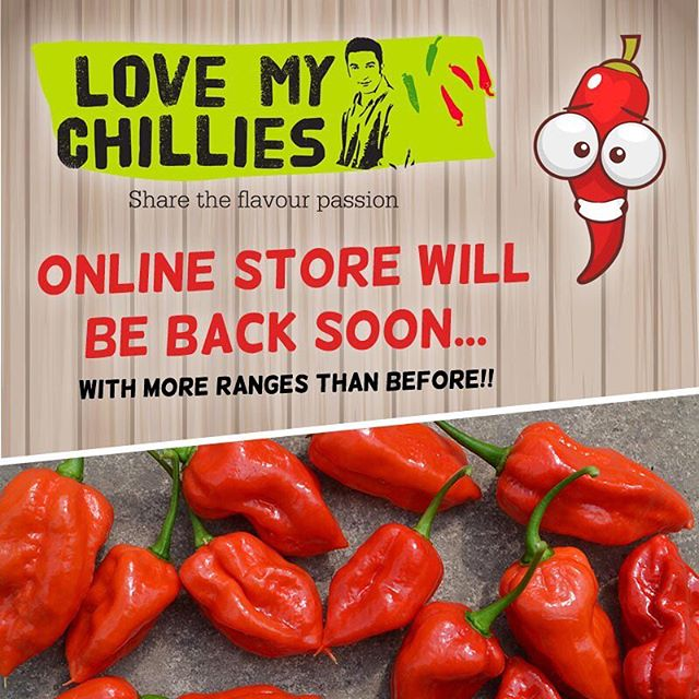 OKAY... so yes we've been a bit quiet, lots of off season planning and adding a sizeable (pics coming soon) addition to the glass house. BUT we're re-lunching the online store very soon... and we're adding more or our ranges than ever before. Keep your eyes peeled folks... . . #chillies #lovemychillies #spicy #chillipepper #carolinareaper #komododragon