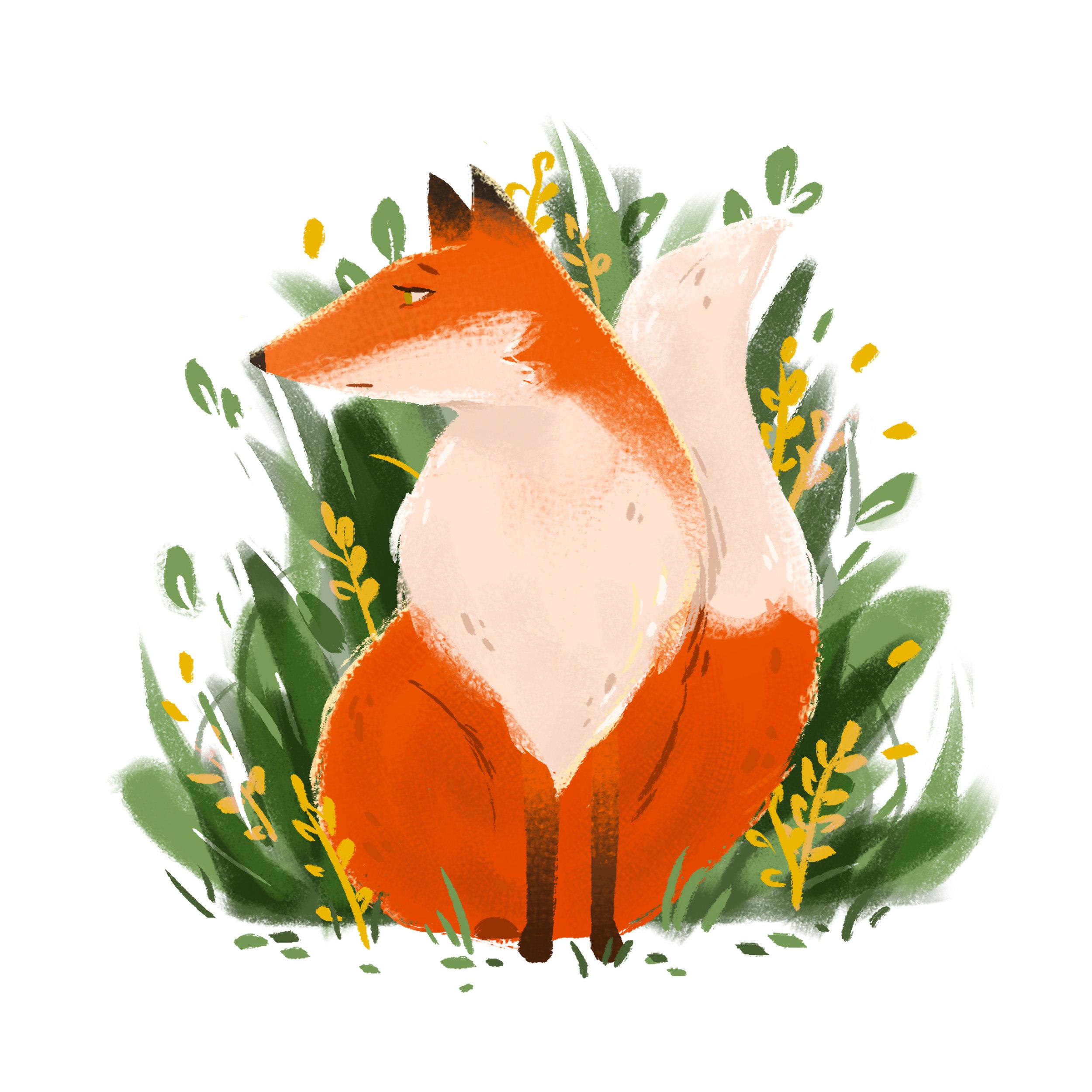Autumn Fox.jpg