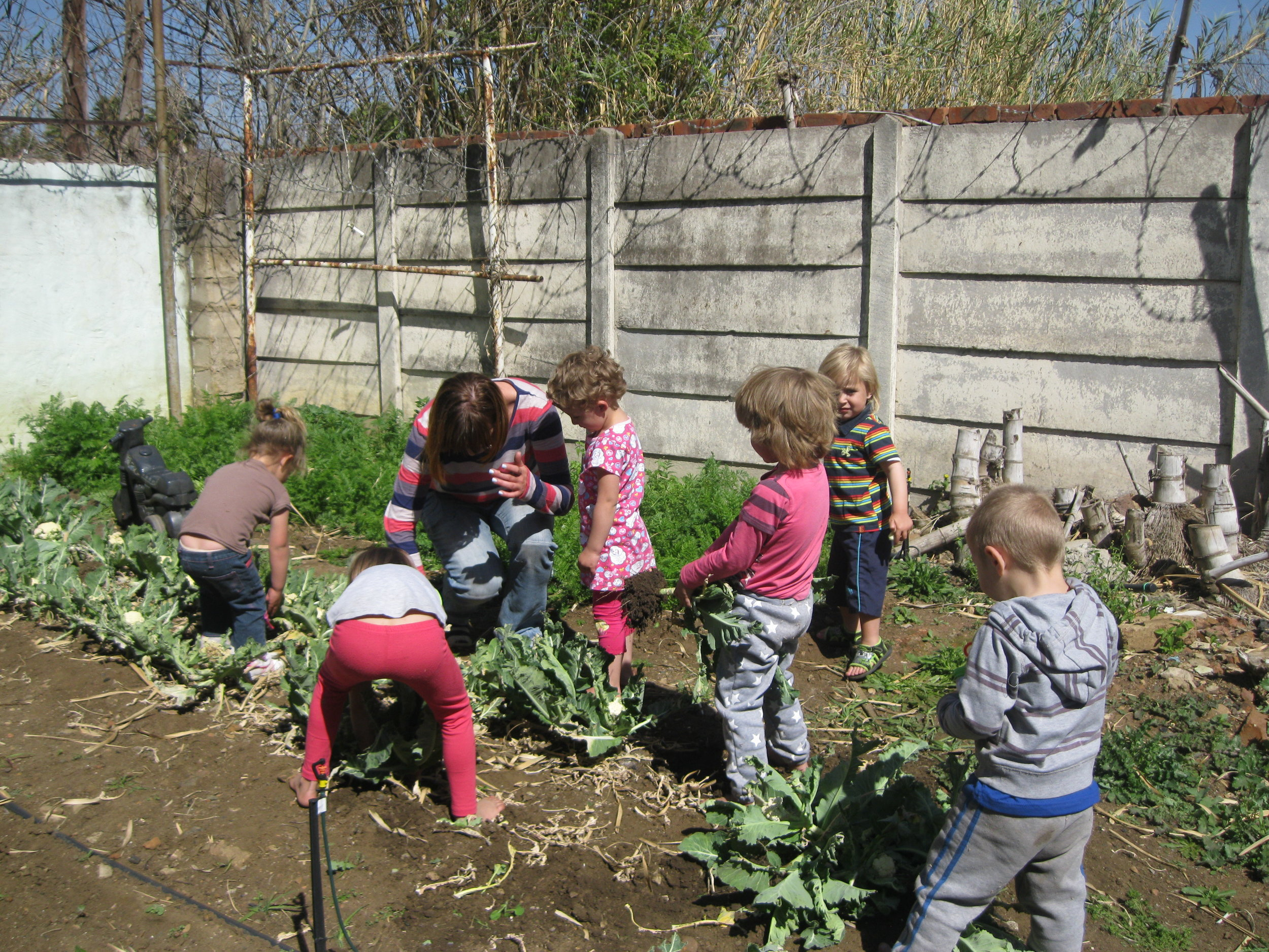 Helping a community to help themselves -