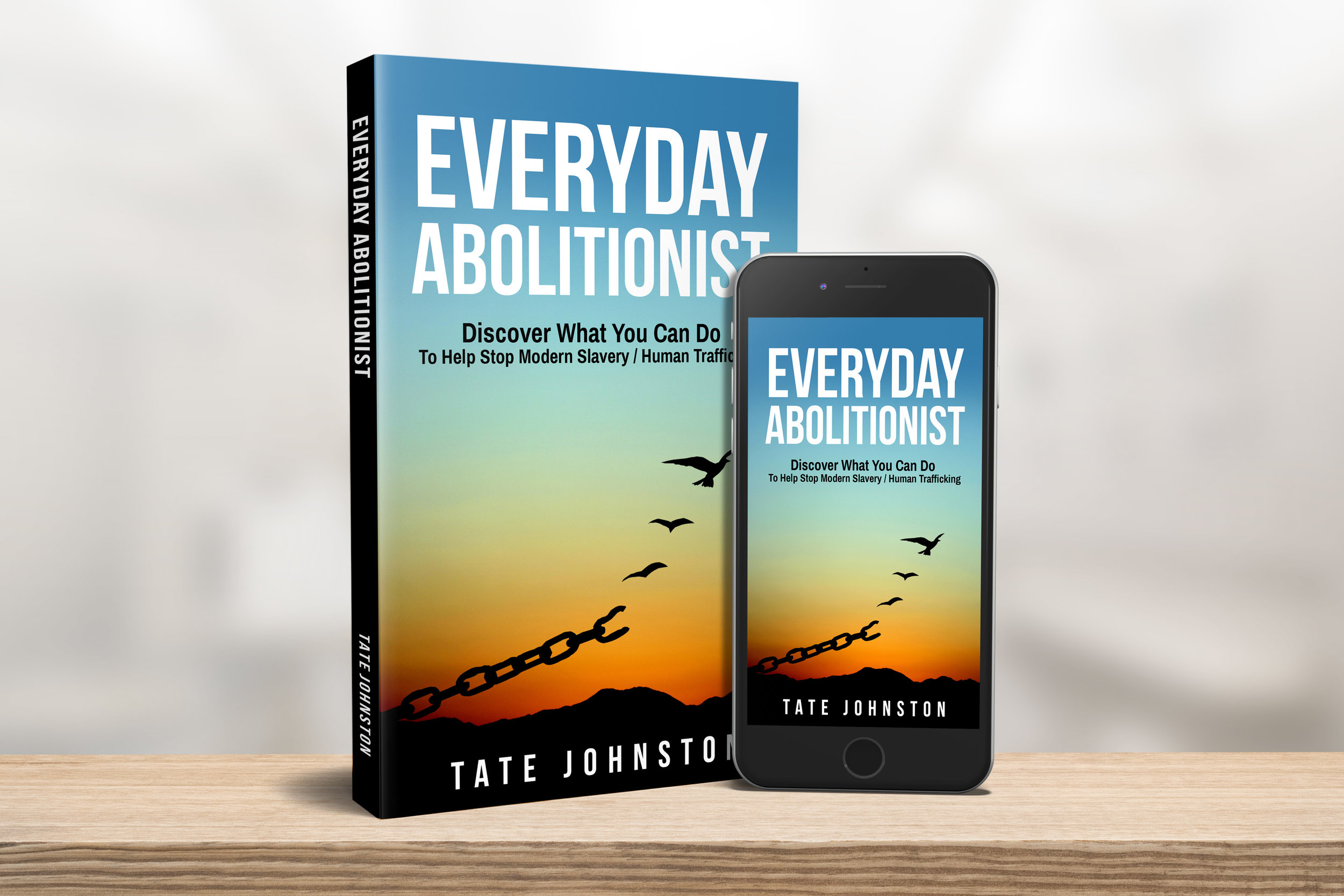 Everyday Abolitionist 3D paperback iphone.jpg