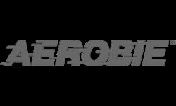 Aerobie Flying Ring