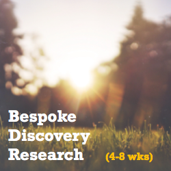 Bespoke Discovery research.png