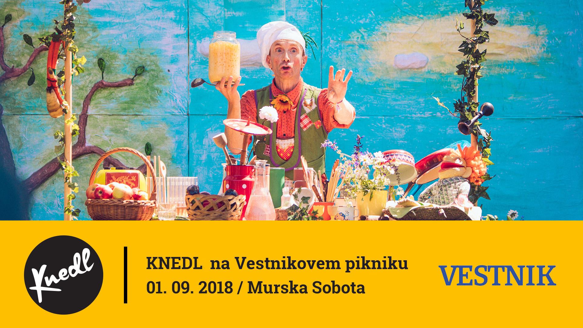 2018_09_01_Vestnikov_piknik_2.jpg