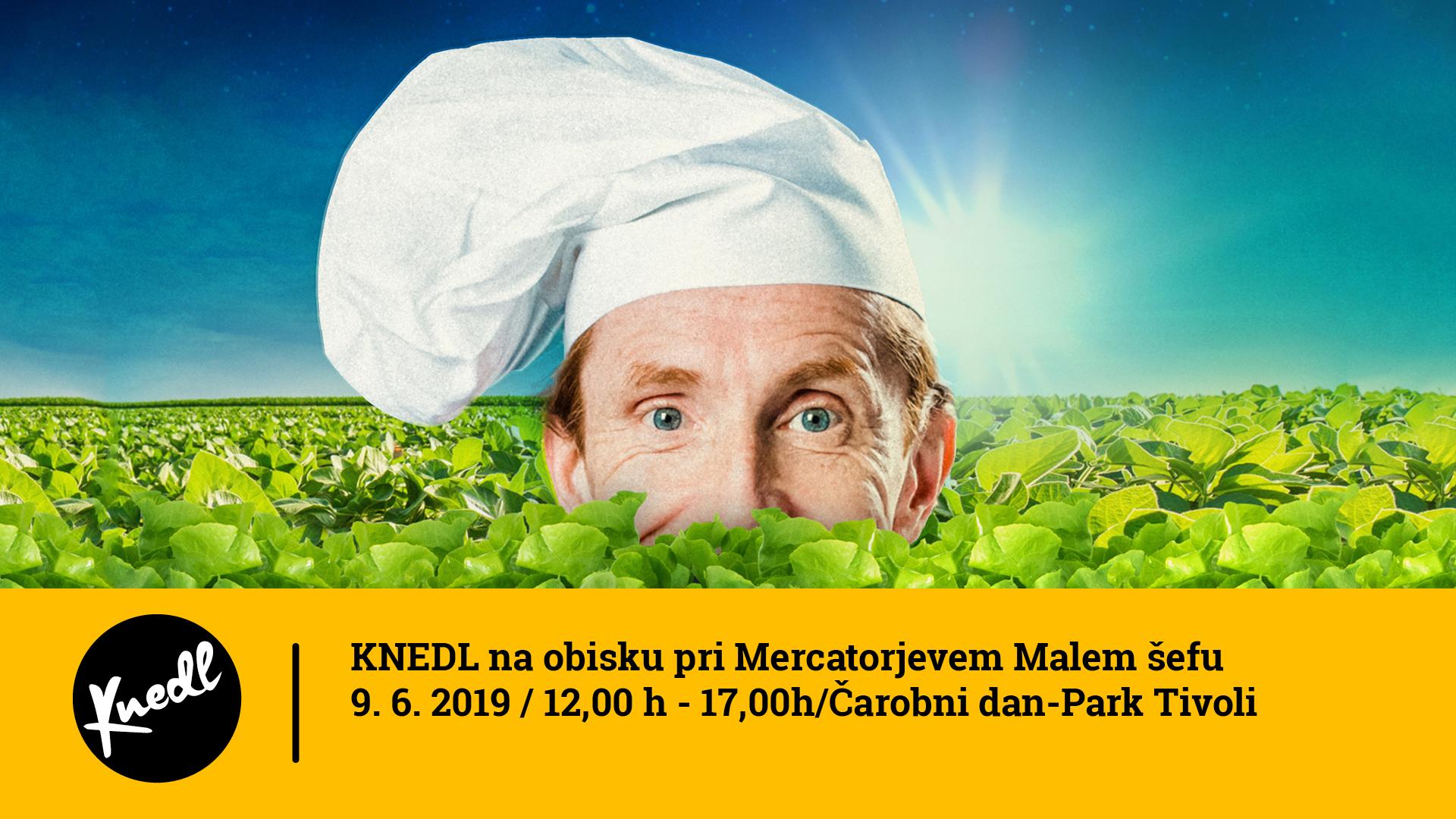 2019_06_09_KNEDL_Mercator.png