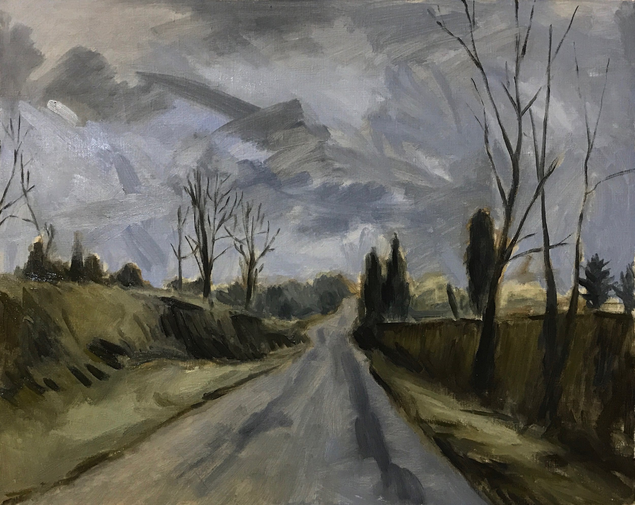Road in January