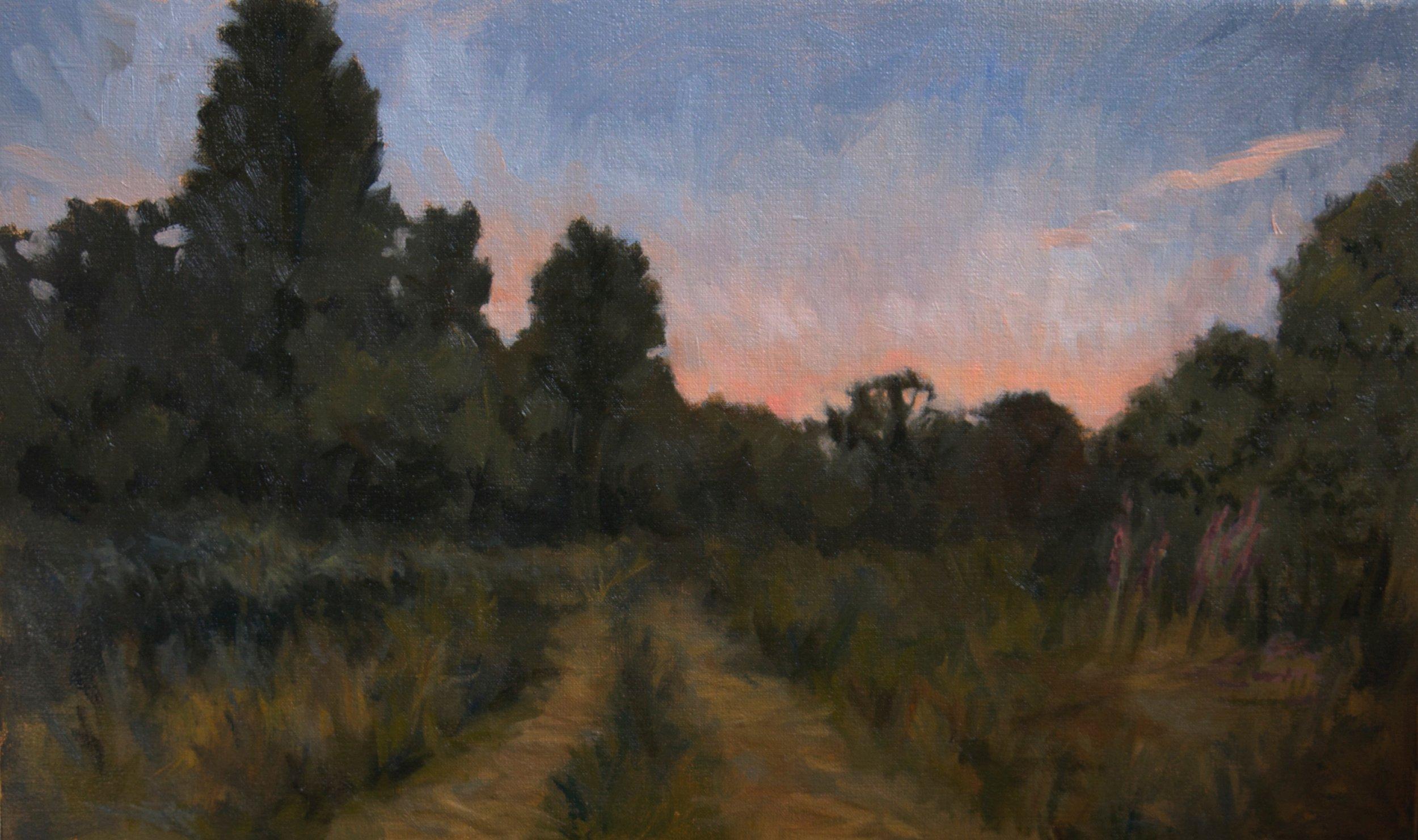 Dawn and Tracks