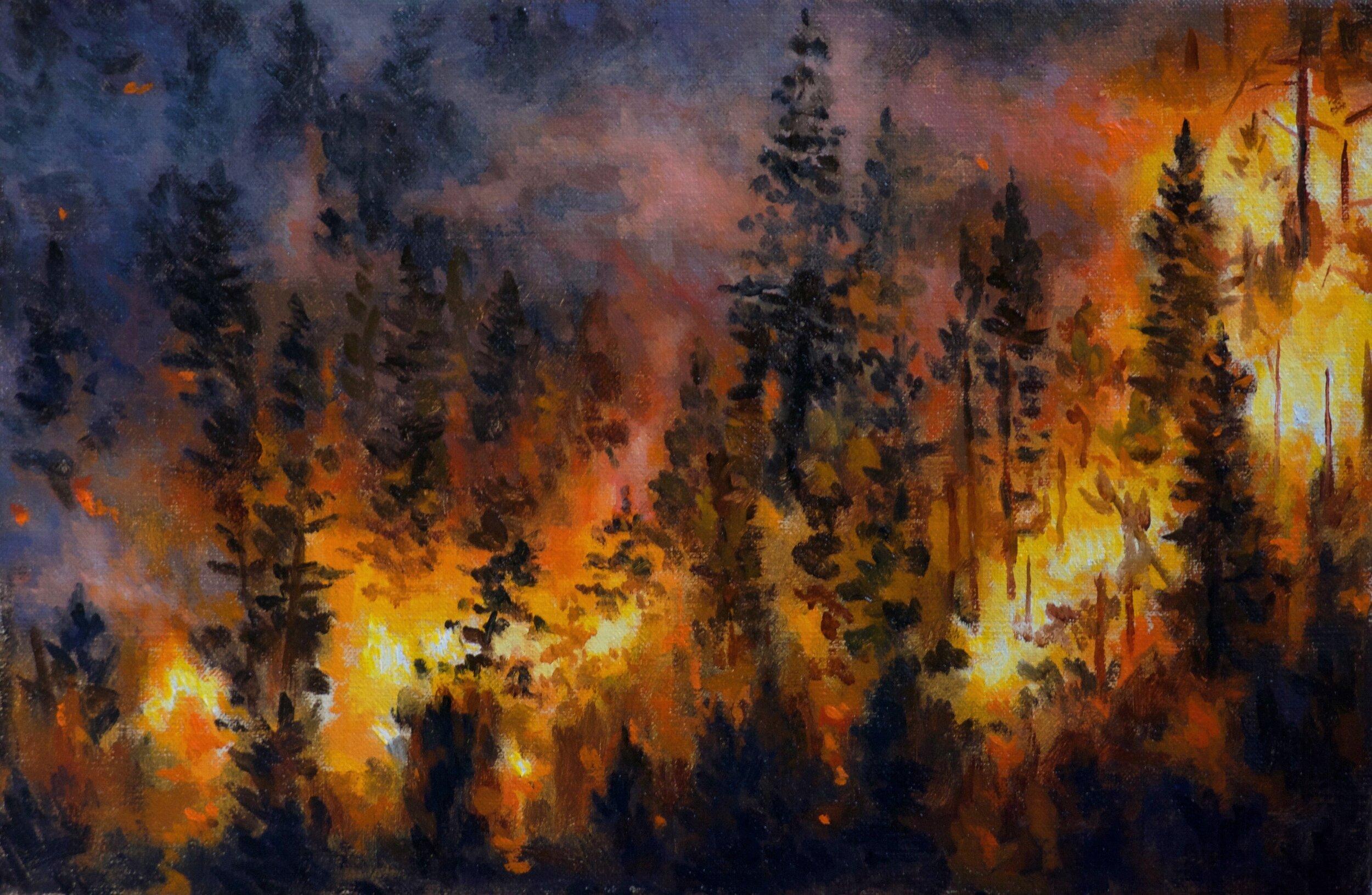 Forest Fire 20cm x 30cm.JPG