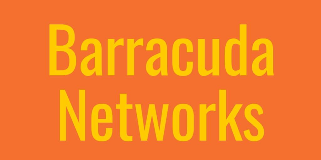 4-3-Barracuda Net.jpg