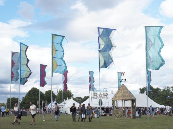Wilderness Festival Flags.JPG