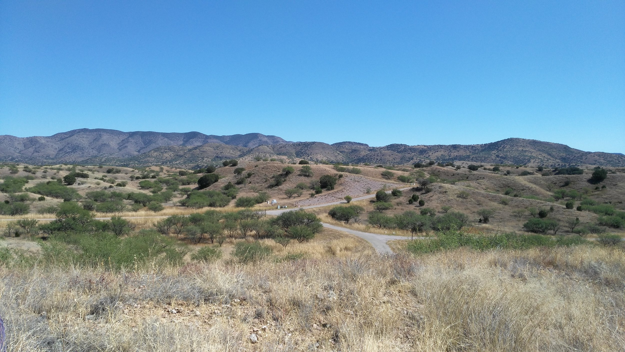The site of a failed housing development in the semiarid desert of Patagonia. Roads and infrastructure were begun here. The property has been purchased by the Border Lands Restoration Institute who are conceiving of ways to fund the restoration project while potential working with housing developers and agriculture.