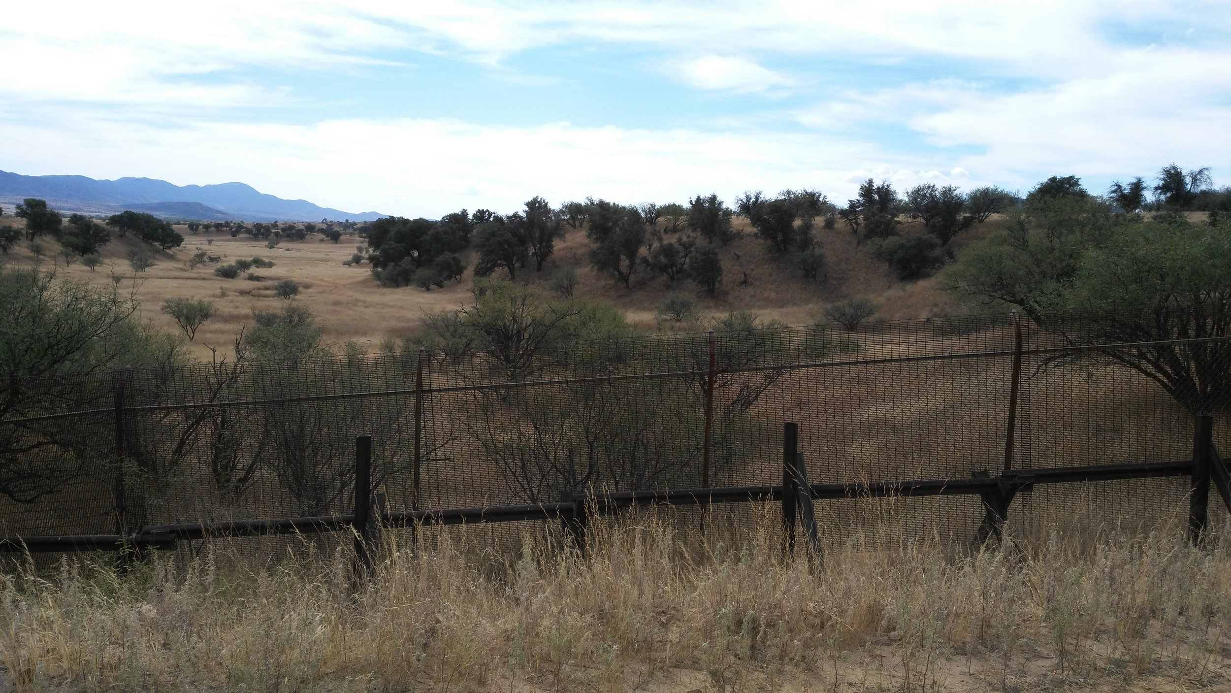 Patagonia Smaller border fence.jpg