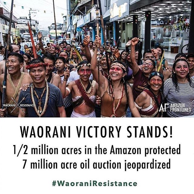 "Yay! This is game changing for the Amazon. Thank you to all who shared and signed petition. The Waorani have defeated the Ecuadorian government on appeal, blocking the sale of 500,000 acres of their ancestral lands from oil drilling!! ""We have shown the world that life is more important than oil!"" Said Nemonte Nequimo, Waorani leader. "" and United we can protect our way of life, the Amazon rainforest, and our planet from destruction""  Now is the time to keep the momentum going, and turn this precedent into a victory for neighbouring indigenous nations, like Achuar, Shuar, Kichua, setons, Secoya who are defending 7 million acres of Amazon rainforest threatened by oil development. The sacred headwaters of the Amazon region #waoraniresistance #istandwiththeamazon #sacredheadwaters #keeptheoilintheground #indigenousresistance @amazonfrontlines"