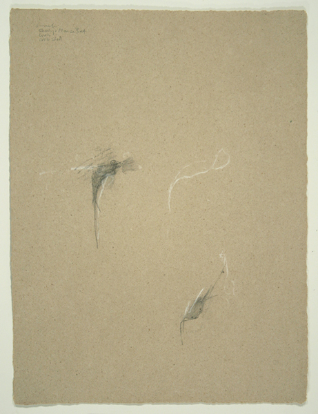 Animals VI, 1992, Pencil on Handmade Paper, 26 in. x 19.5 in.