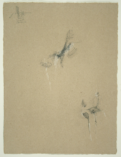 Animals V, 1992, Pencil on Handmade Paper, 26 in. x 19.5 in.