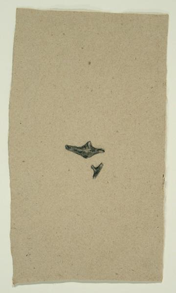 Animals Prototype, 1992, Bone on Handmade Paper, 26 in. x 17 in.