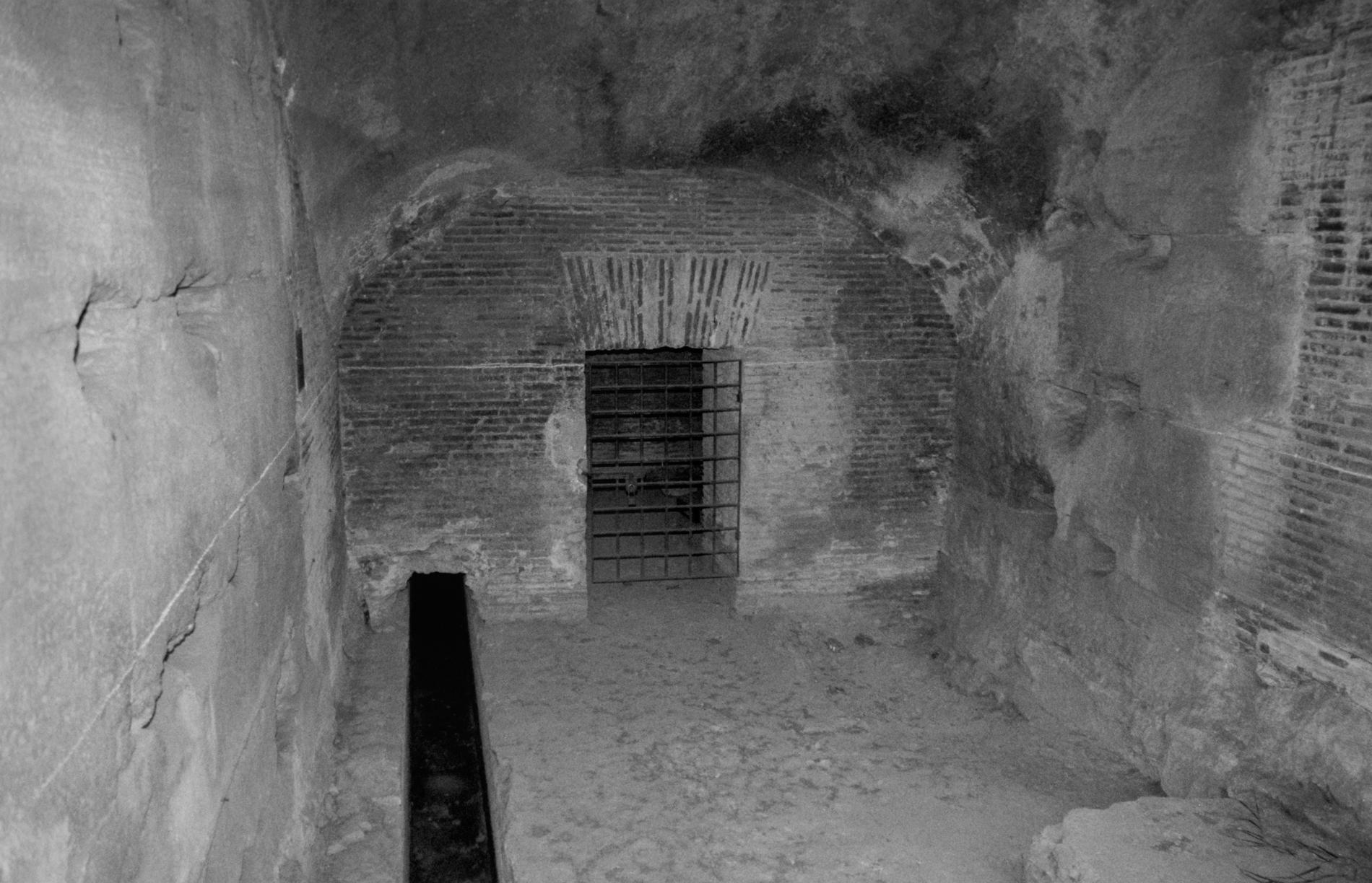 Cell door, 2019/2005