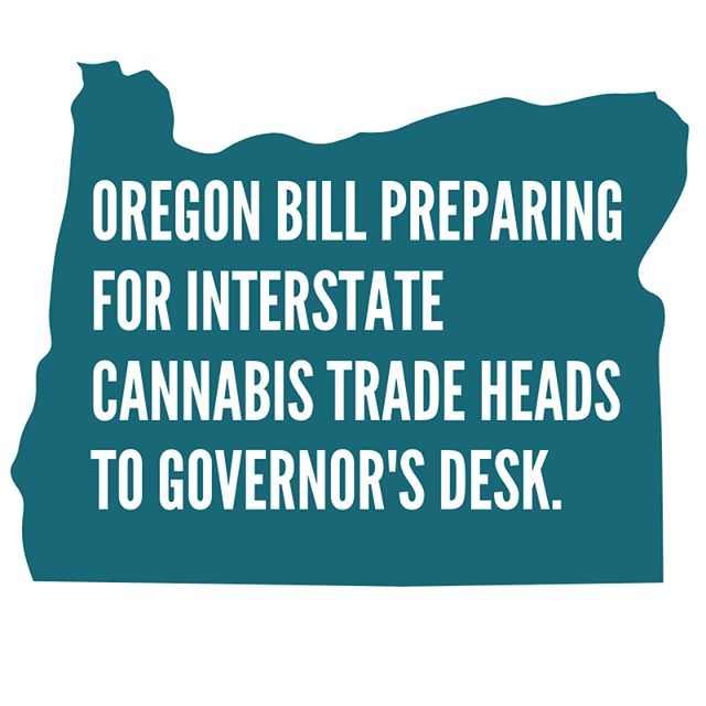 🔥 🔥 🔥  #SB582 passes 42-17! They told us last fall it wouldn't happen! This is a huge win for Oregon, and for #craftcannabis businesses and cannabis lovers everywhere. Media calls: Adam @ (503) 917-9066. ⁣ ⁣.⁣ ⁣Incredible leadership from #orleg Sen. Floyd Prozanski, Rep. Ken Helm, Rep. Carl Wilson, Rep. Rob Nosse. Tireless effort by so many @ourcraftfuture and @orpotstores members and staff.  The bill now heads to @oregongovbrown for signature.  #ONEfix #oregoncannabis #emeraldregion #licensedinterstatetransfer #GetLit #wedidit!