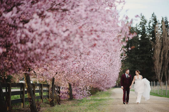 blossom--22.jpg