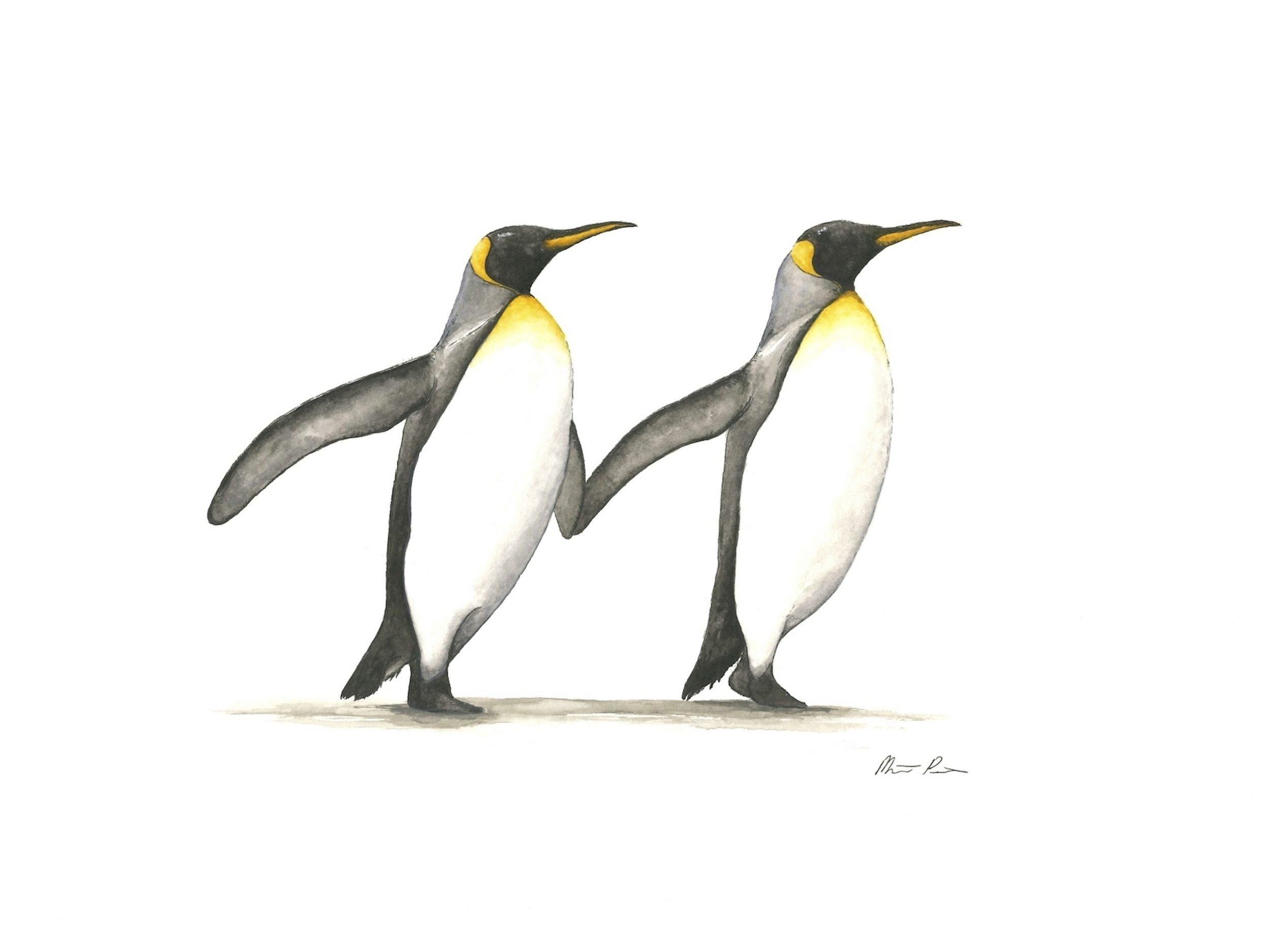 Penguins - 12