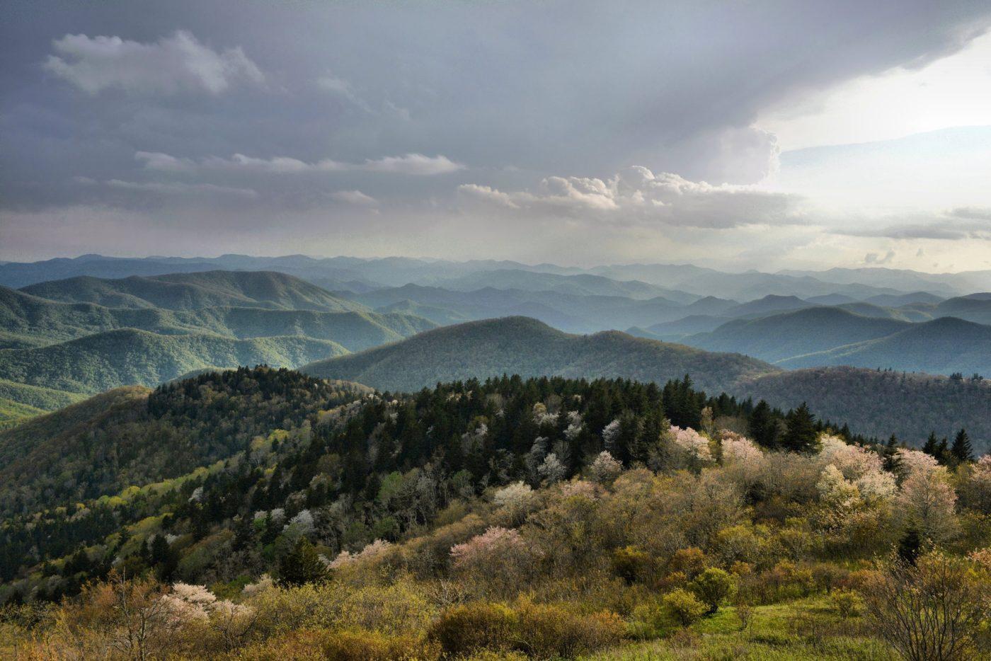Photo of Survival school wilderness location in Blue Ridge Mountains
