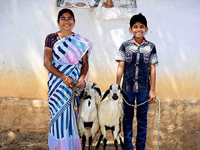 Widow Assistance Program - We've Got Your Goat! And more…Give a widow and poverty-stricken families nutrition and a sustainable means of income. Your donation will provide a widow with a means to earn an income, whether it's a pair of goats, a sewing machine, rice grinder, or other means; your donation will not only bring a smile to her face, but means to live.$150/per pair of goatsSheep can have up to 2 lambs per yearGoats can have up to 6 kids per yearBoth produce milk, which can be used to also make cheeseSheep's wool and goat fur can be used to make garments.Manure can be used as a fertilizer for gardening.Manure can be sold to local farmers for fertilizer.Breeding and selling can bring in added profit.$150/per sewing machine$150/per rice grinder