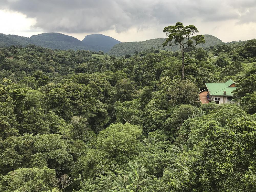 Bangkong Kuhay Valley view.jpg