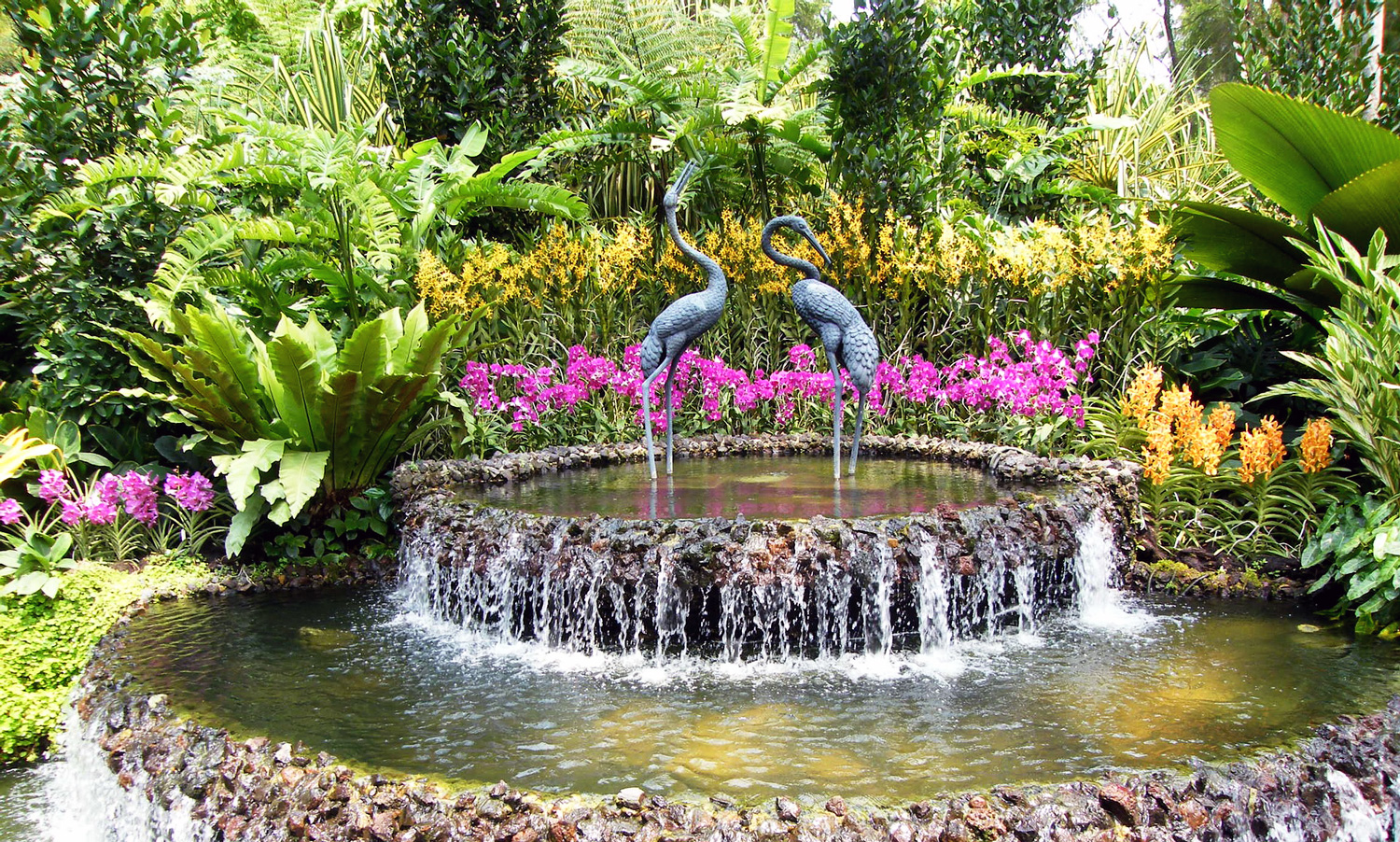 The Singapore National Orchid Garden.   Image:   Smart Lang