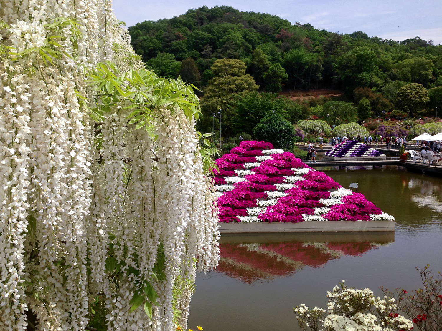 There are colourful displays of flowers throughout the park. Image:  © David Astley