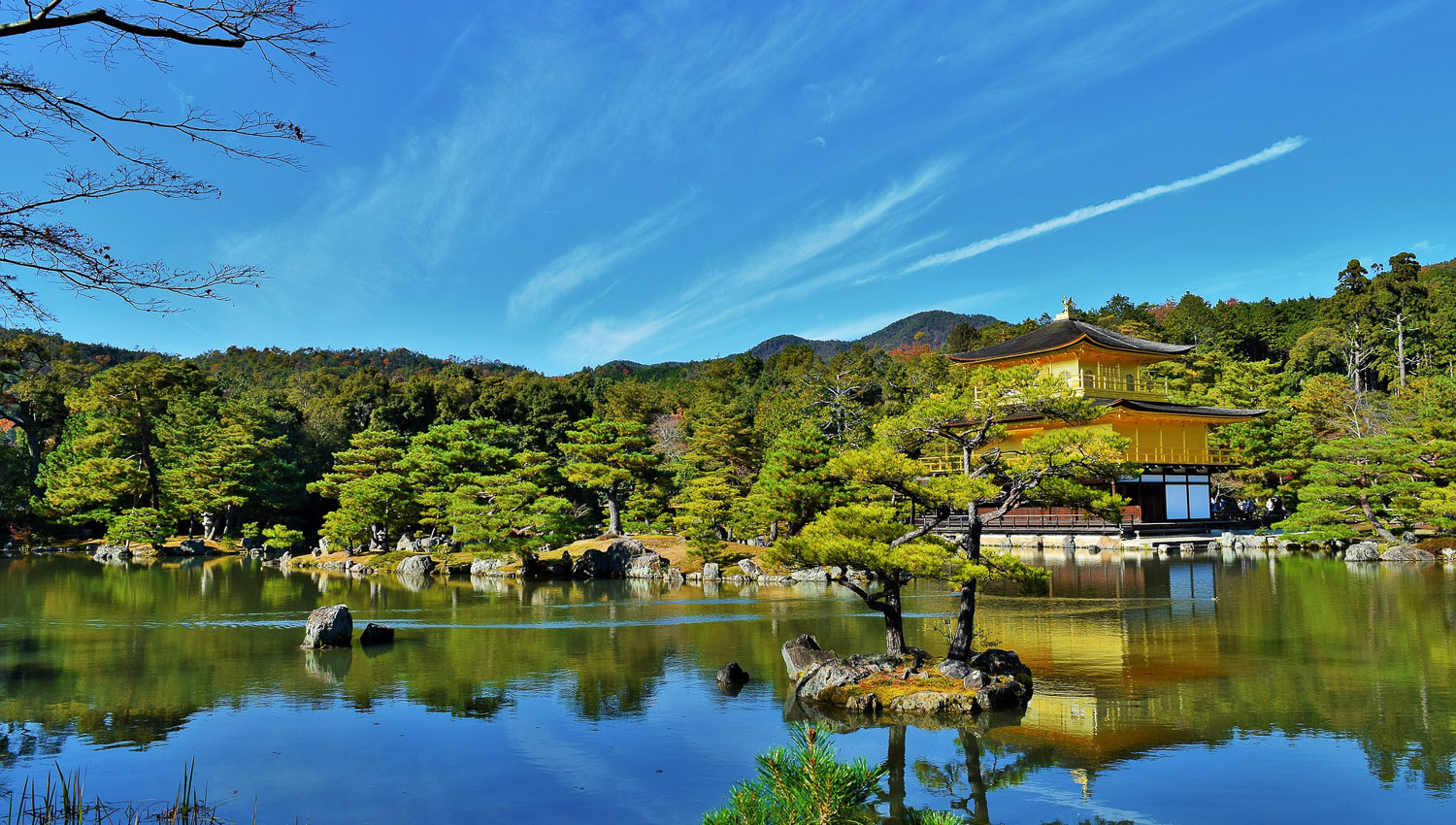 T he gardens of the Golden Pavilion in Kyoto. Image:   Jesse Ramnanansingh