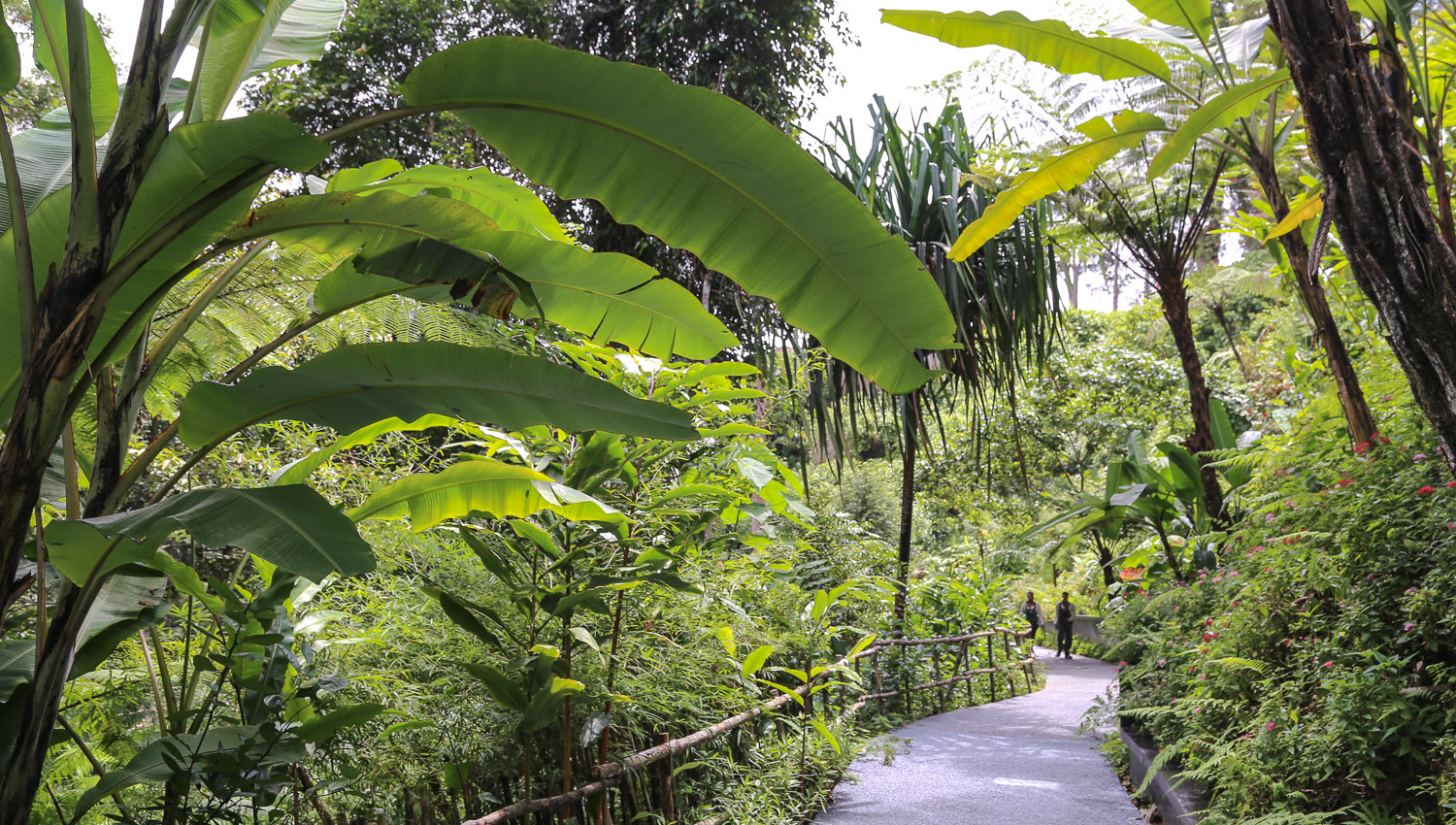 The Habitat's walking paths are easy for seniors. Image:  © Alan Williams