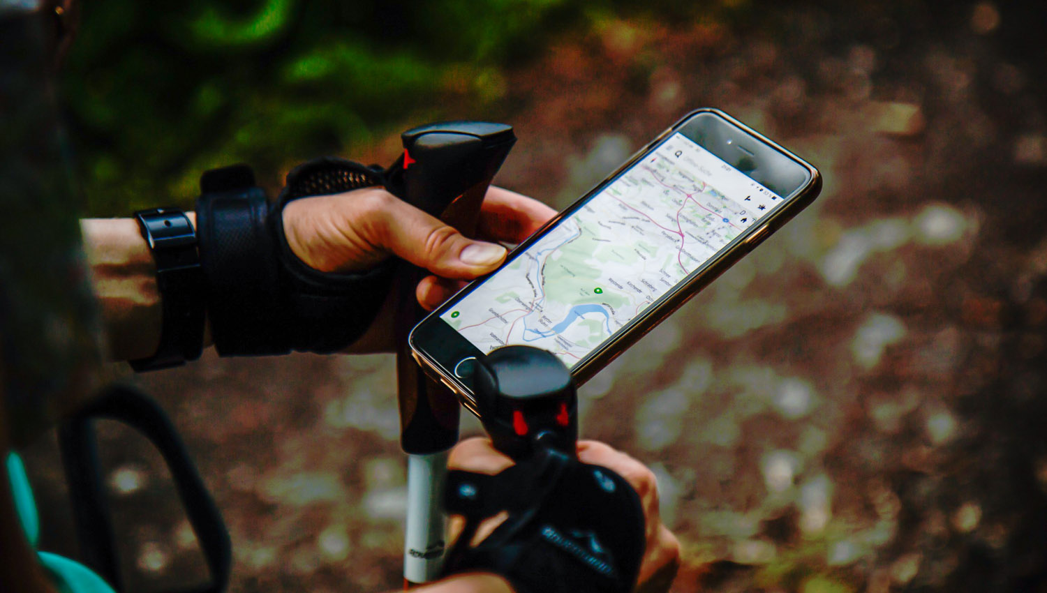 Offline maps can be a godsend for travellers. Image:   StockSnap