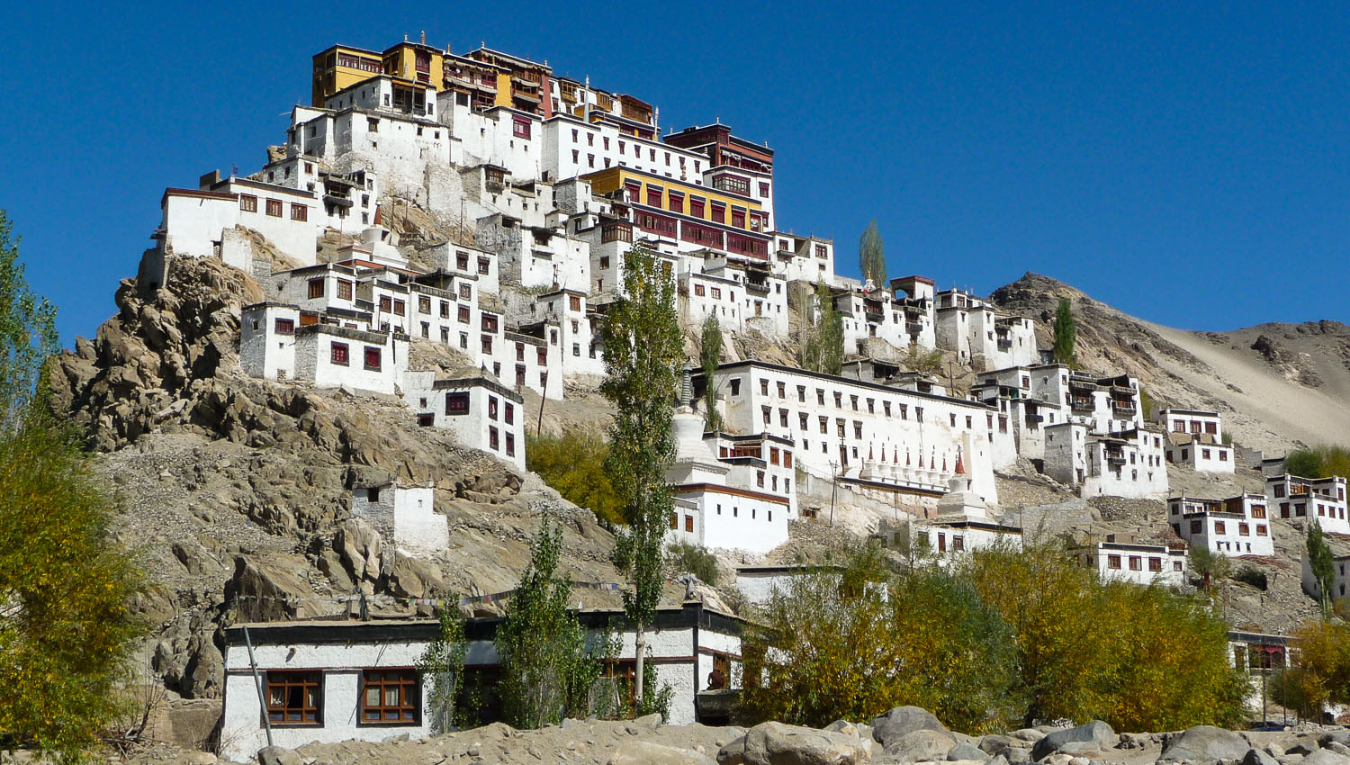 One of Ladakh's many Buddhist monasteries. Image:     Lionel Borie
