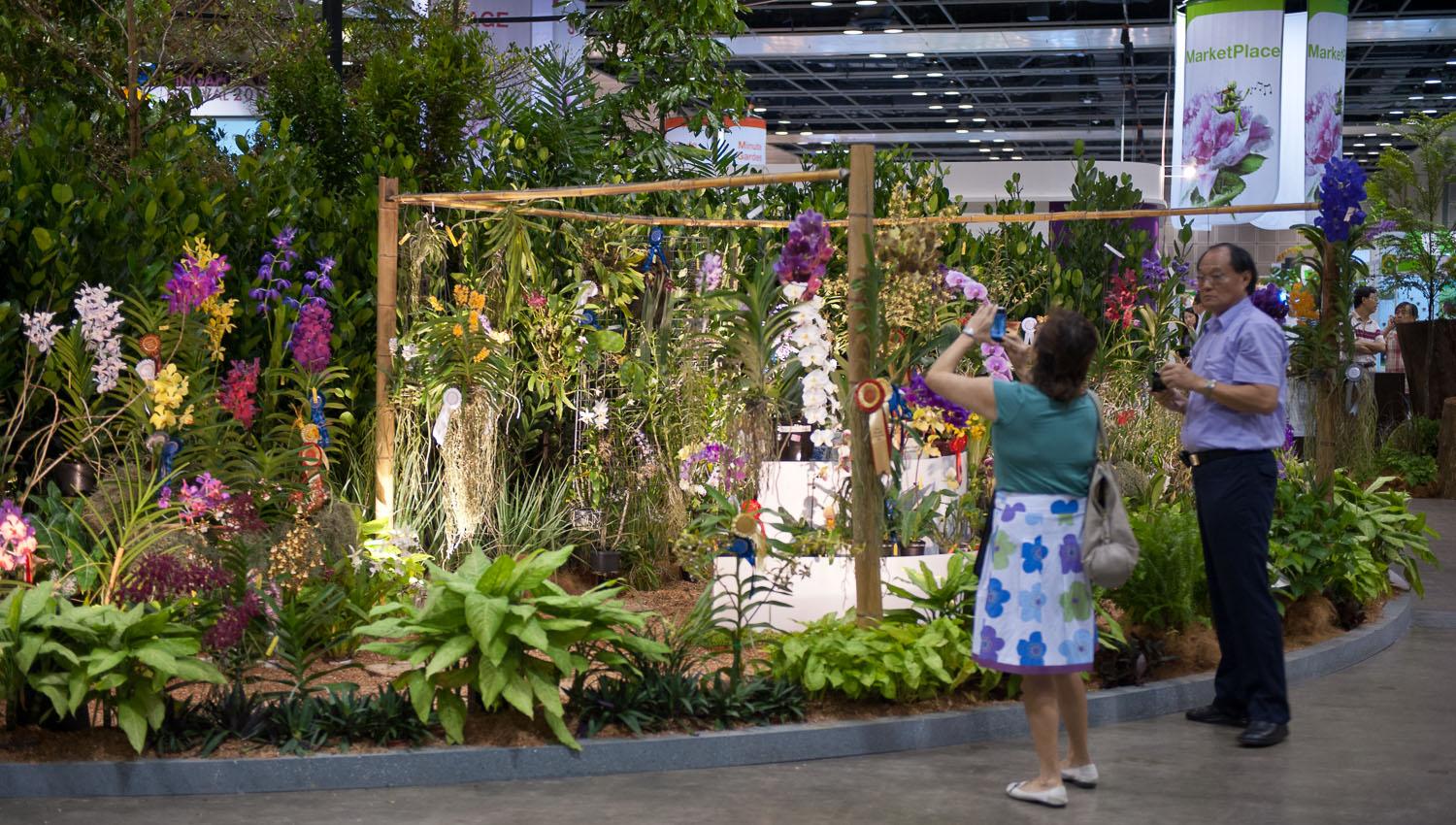 One of Singapore's annual orchid shows. Image:  © David Astley