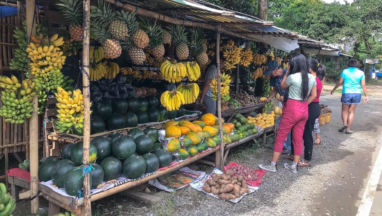 Fruit stalls at Samapaloc, Tanay. Image:  © David Astley