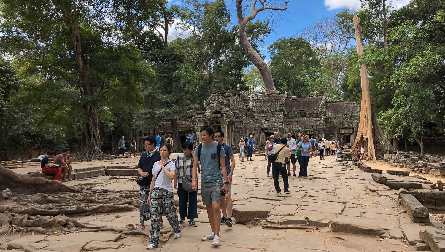 The approach to Ta Prohm is busy too. Image:  © Alan Williams