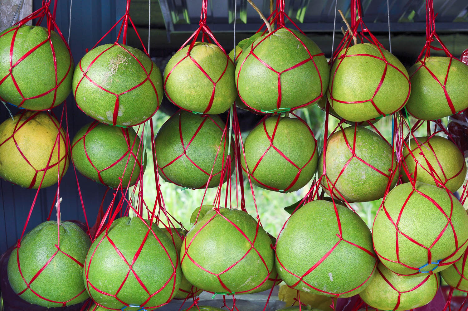 Pomelos for sale at a roadside stall. Image:  © Ravindran John Smith