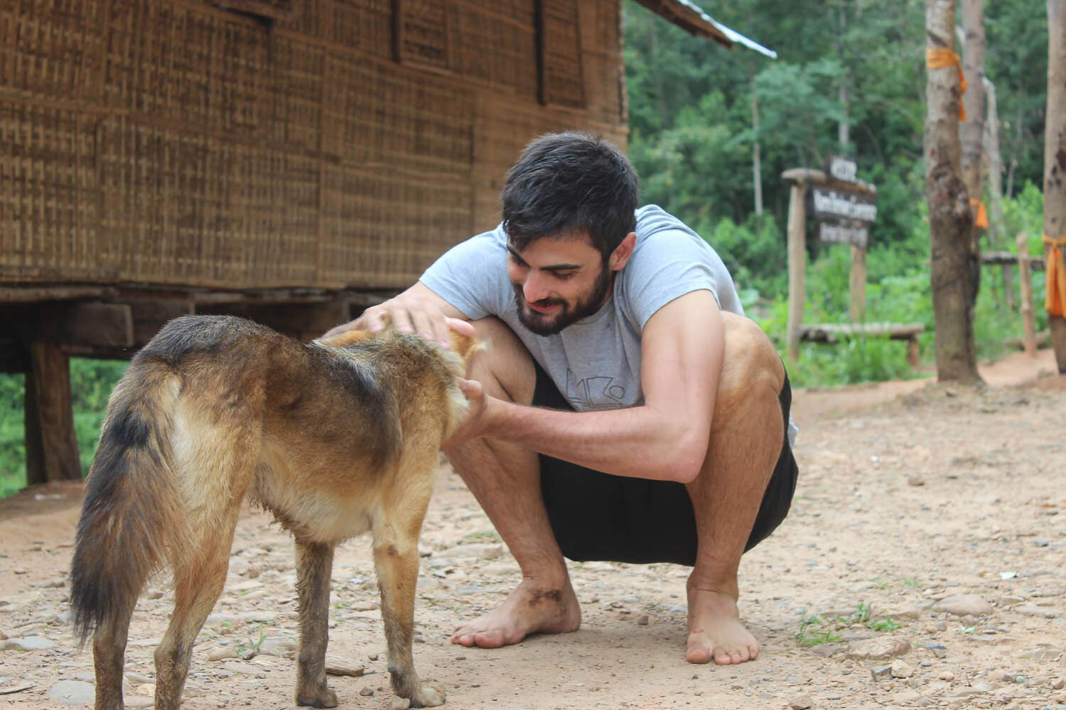 Petting stray dogs carries risks in rural Thailand. Image:  Mbalimbali