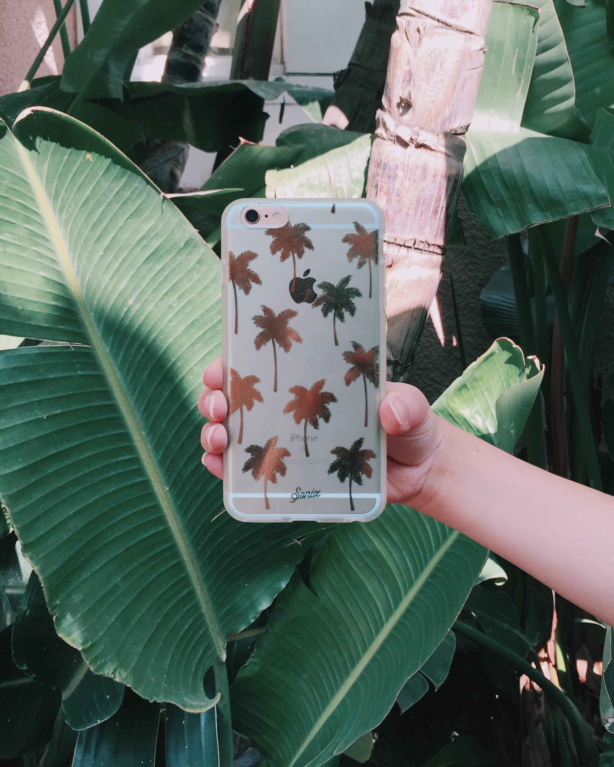 palmbeachblue.jpg