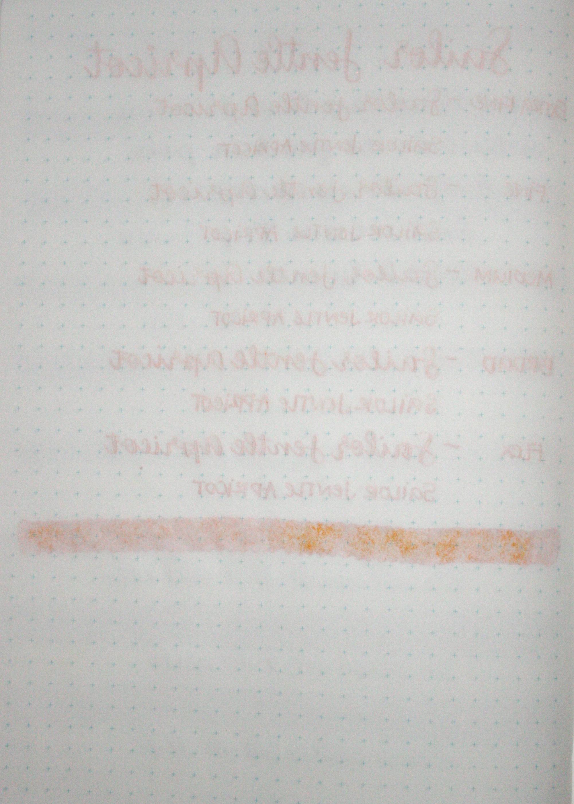 SailorJentleApricot-010.jpg