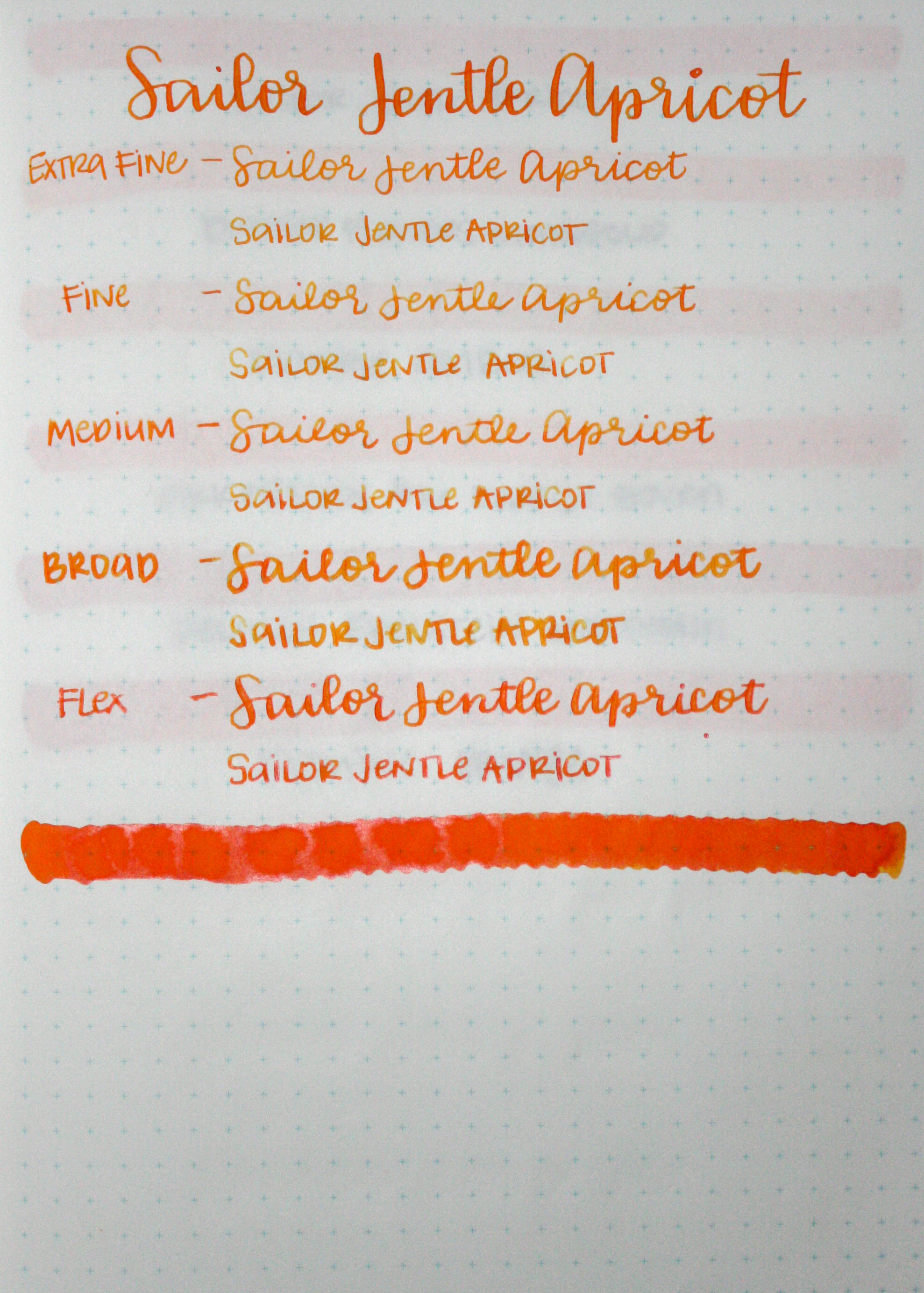 SailorJentleApricot-009.jpg