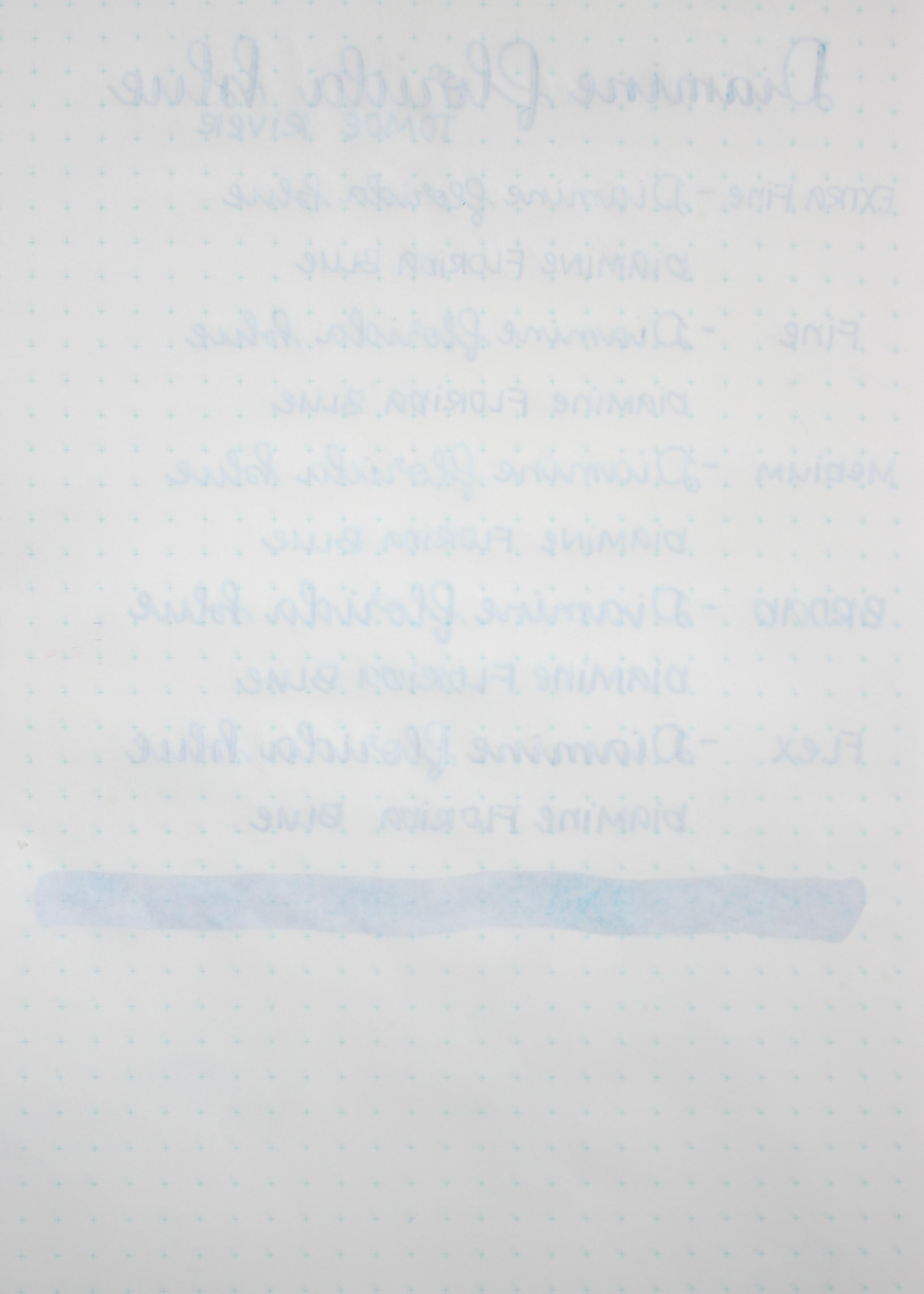 DiamineFloridaBlue-026.jpg