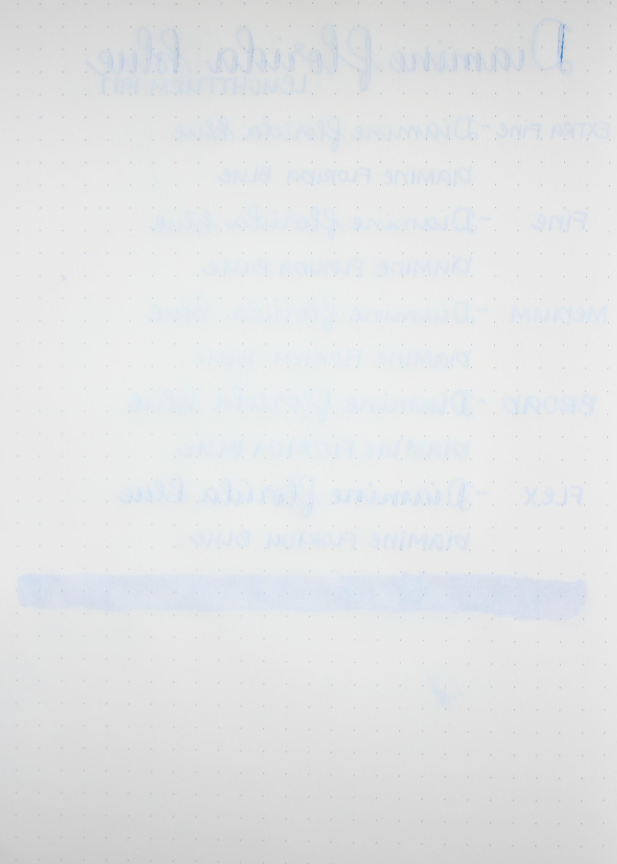 DiamineFloridaBlue-015.jpg